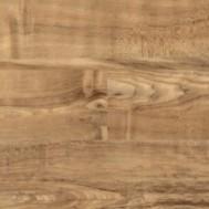 Nut Tree 2202