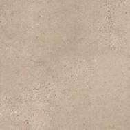 Fossil Limestone 4537