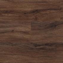 North American Walnut 2236