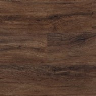North American Walnut 2236